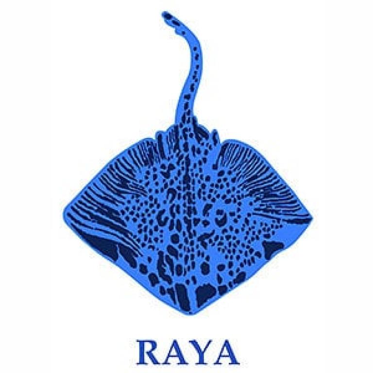 Raya Panarea